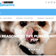 Nestlé Purina Taps Into Behavioral Data to Create Personal Experiences