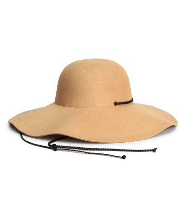 H&M Felted Floppy Hat