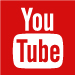 Subscribe to the TDS YouTube Channel