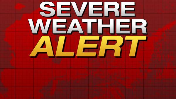Image: Severe Thunderstorm Warning issued for Genesee, Lapeer, and Oakland counties