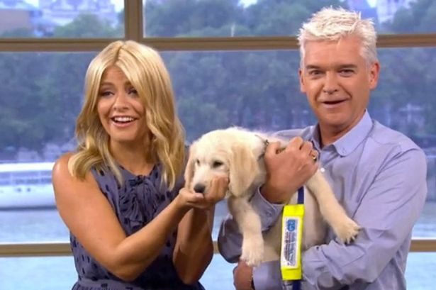 Phillip Schofield and Holly Willoughby welcome adorable new addition
