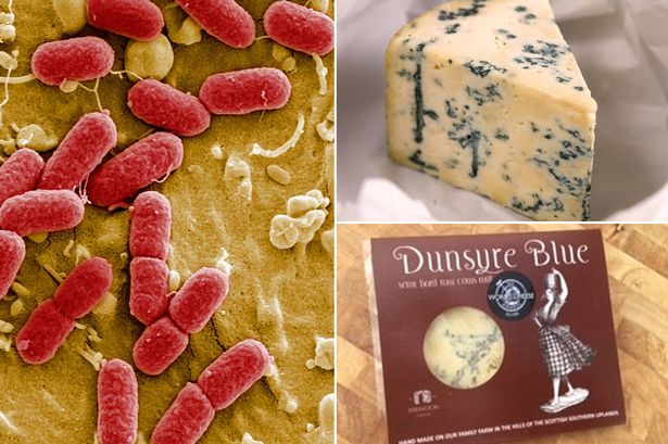 A child has died from E.coli in an outbreak linked to a brand of blue cheese