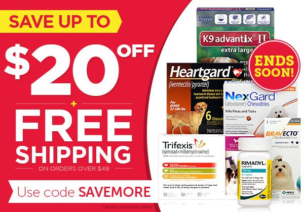 Save up to $20 OFF + FREE Shipping